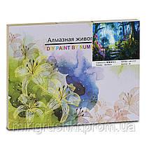 Алмазная мозаика GB 72355 (80638) 40х30, 26 цветов, в коробке