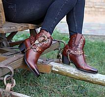 Казаки Etor 7045-9670-1099 коричневые