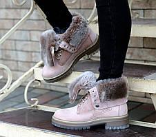 Ботинки Etor 10315-5551-492 40 пудра