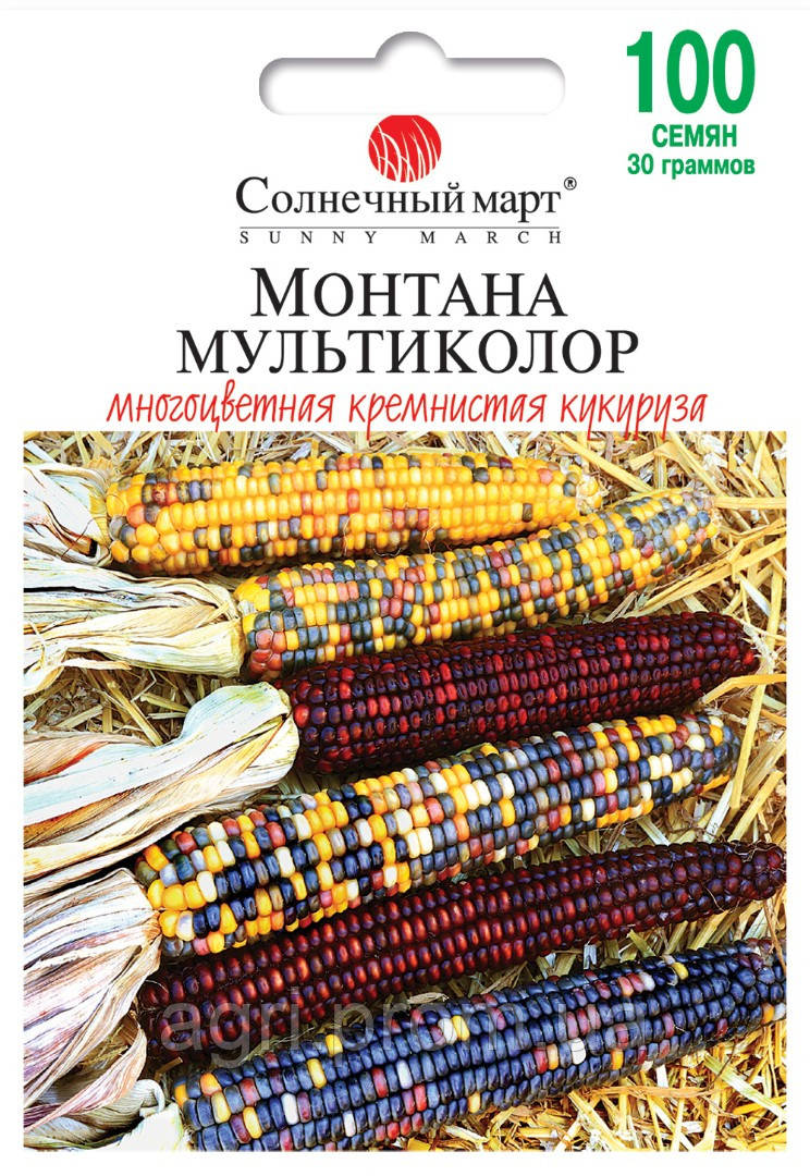Кукуруза Монтана Мультиколор, 30гр.