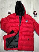 Мужская зимняя куртка Canada Goose красная