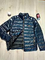 Мужская зимняя куртка Philipp Plein синяя
