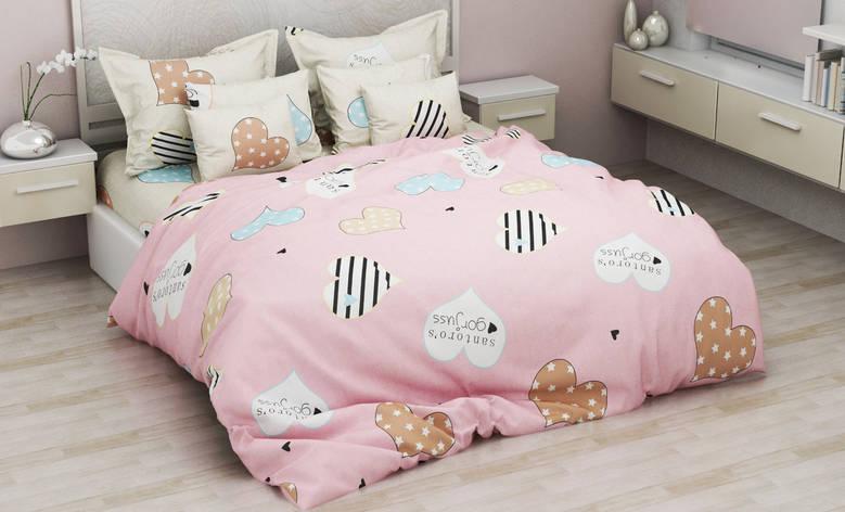 Двуспальный комплект постельного белья евро 200*220 хлопок  (13173) TM KRISPOL Украина, фото 2