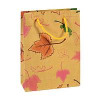 Сумочка подарочная Gift Bag Native Осень Бумага 20х15х6 см Натуральный 16988, КОД: 1347568