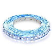 Светодиодная лента Biom Standart 2 2835-120 12 В IP 20 негерметичная 5 м Синий СЛ00757, КОД: 1335085