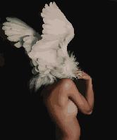 "Картина по номерам BrushMe ""Абстракция в крыльях"" 40х50см GX29239"