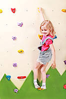 Детский скалодром «Лесочек» Kidigo (SDS06), для развития Вашего ребенка.