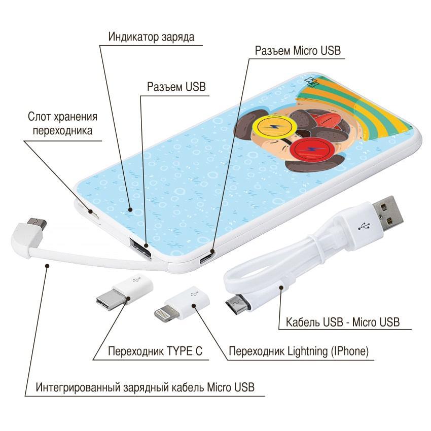 Портативная мобильная батарея Полосатый Мопс, 5000 мАч (E505-16)