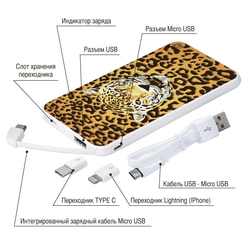 Портативное зарядное устройство Леопард, 5000 мАч (E505-19)