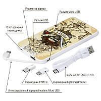 Портативный аккумулятор Пираты, 5000 мАч (E505-28), фото 1