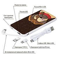 Портативная батарея Мопс-пират, 5000 мАч (E505-29), фото 1