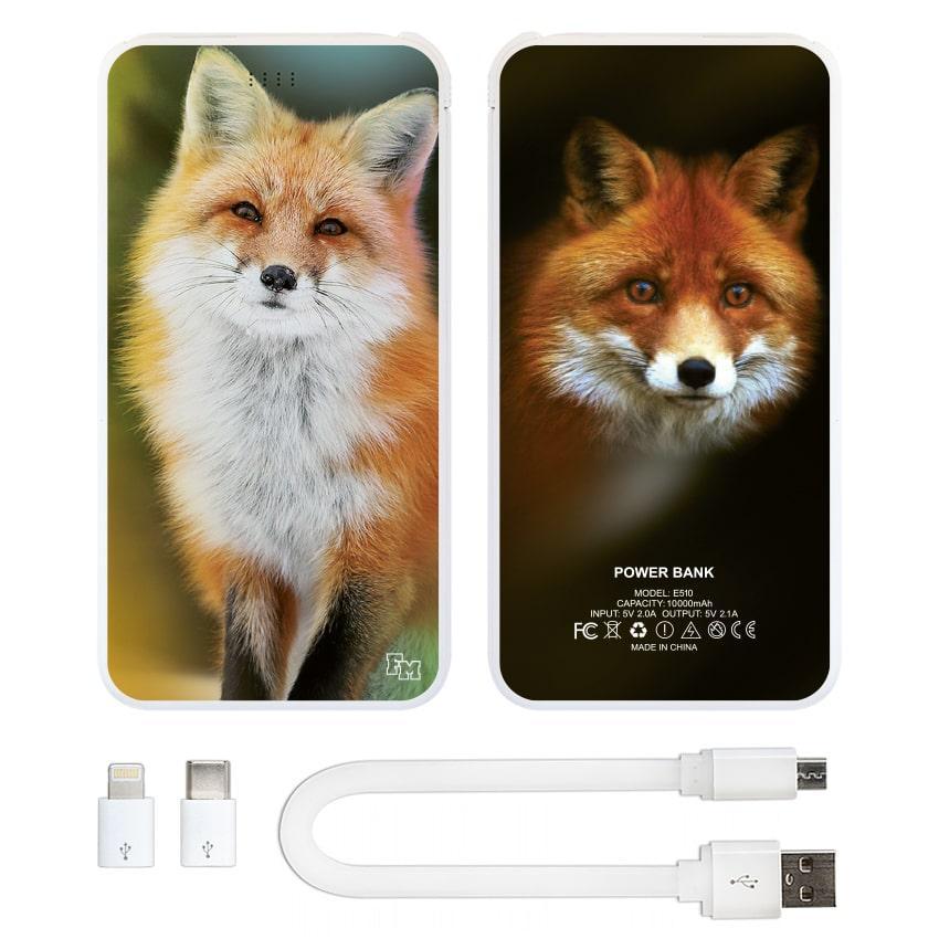 Универсальная мобильная батарея Лиса, 10000 мАч (E510-20)