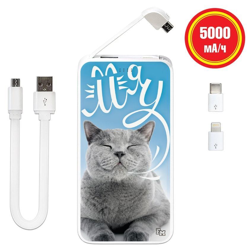 Мобильный аккумулятор Хитрый кот, 5000 мАч (E505-18)