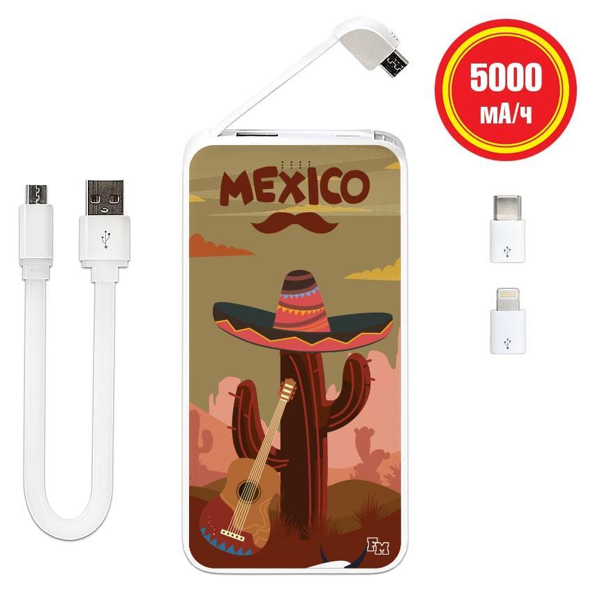 Павер банк Мексиканский кактус, 5000 мАч (E505-25)