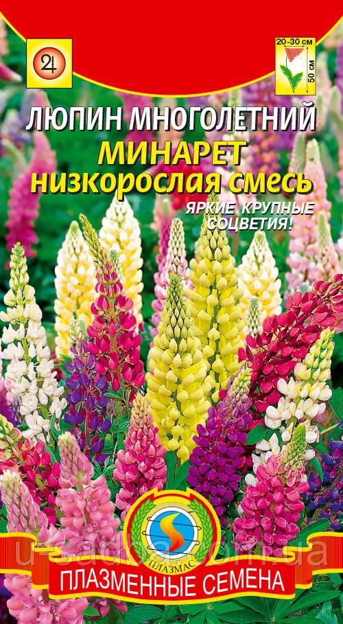 Семена цветов  Люпин многолетний Минарет низкорослая смесь 0,45 г смесь (Плазменные семена)
