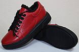 Кеды красные женские зимние кожаные от производителя модель РИ0616М-2, фото 2