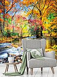 Фотообои Осень  разные текстуры , индивидуальный размер, фото 2