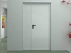 Двери DoorHan технические двухстворчатые глухие DTG/1150/2050/7035/L/N
