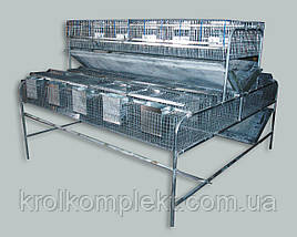 Клетка для кроликов КО 1,5 Ф  (откормочная 108 голов ).