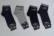 Носки мужские спортивные