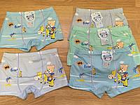 Трусы детские для мальчиков 4-8 лет, Бамбук Боксеры «Мишка» (303)