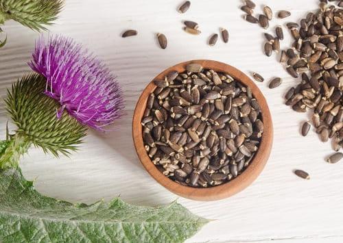 Расторопша семена , пищевые