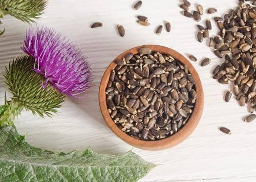 Расторопша семена , пищевые, фото 2