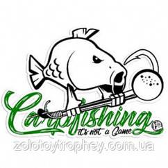 Наклейка Hotspot Design Carpfishing Sticker 30x21cm