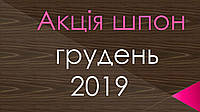 Акция  2019