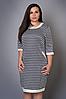 Платье с принтом фенди, р 46-56