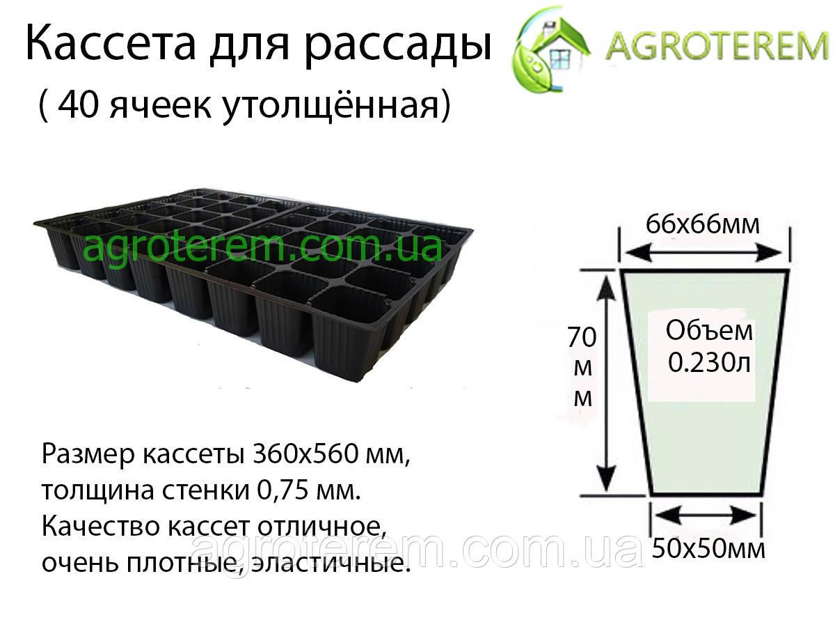 Кассеты для рассады Польша 40 ячеек, размер кассеты 36х56см толщина 0.75мм