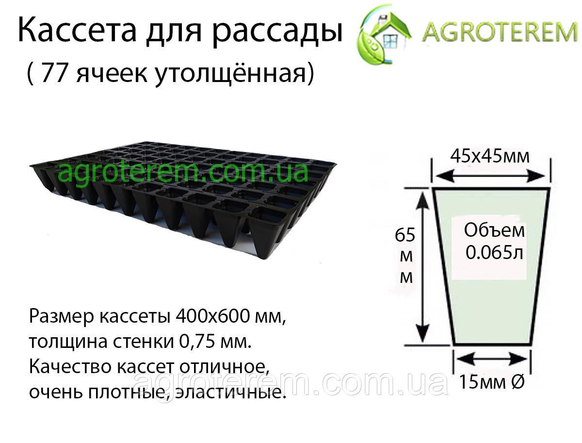 Кассеты для рассады Польша 77 ячеек,размер 40х60см толщина стенки 0,75мм