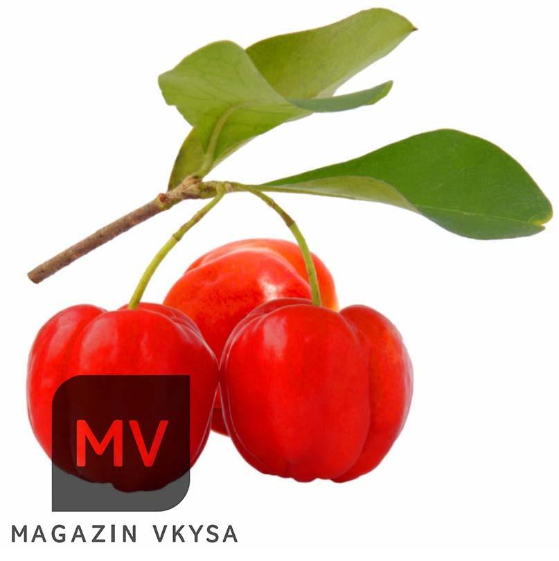 Пюре фруктовое Ацерола tm Rogelfruit 1кг
