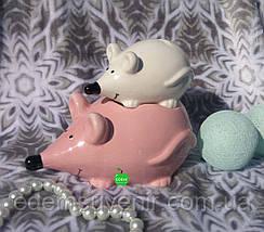 """Копилки Мышки """"Семейный бюджет"""", фото 3"""