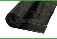 Агроткань 100 г/м плотность (1,2м*50м) Agreen, фото 1