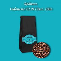Кофе зерновой Robusta Indonesia ELB 19scr (Робуста Индонезия) 100г. БЕСПЛАТНАЯ ДОСТАВКА от 1кг!