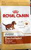 Royal Canin Dachshund junior 1.5 кг