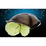Музыкальный ночник-проектор, звездное небо черепашка Turtle Night Sky Olive (ZOSTURTLE оливковый), фото 3
