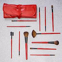Набор кистей для макияжа Shany 12 pc red