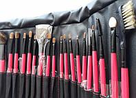 Набор кистей для макияжа Shany 22 pc