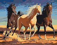 Картина по номерам животные. Прекрасные лошади 40 х 50 см (с коробкой), фото 1