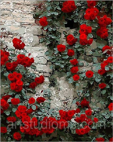 Картина по номерам цветы. Вьющаяся роза 40 х 50 см (с коробкой)