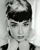 Картина по номерам Одри Хепберн 40 х 50 см (с коробкой), фото 1