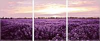 Картина по номерам Триптих. Лавандовое поле Триптих 50 х 150 см (с коробкой), фото 1