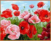 Картина по номерам цветы. Алые маки (в раме) 40 х 50 см (с коробкой)