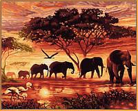 Картина по номерам природа. Саванна (в раме) 40 х 50 см (с коробкой), фото 1