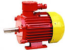 Электродвигатель 2В 180M2 (30кВт/3000об\мин) ВРП, ВР, АИУ, АВ, АВР, ВРА, фото 3
