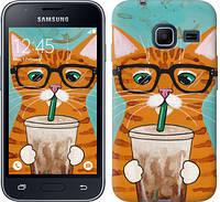 Чехол EndorPhone на Samsung Galaxy J1 Mini J105H Зеленоглазый кот в очках 4054c-258, КОД: 929001