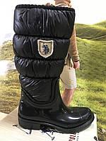 Жіночі черевики  Polo.