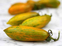 Помидоры  Зеленая Сосиска, фото 1